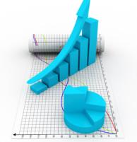 Consulenza statistica e informatica